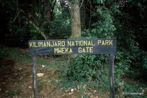 mweka gate (2)